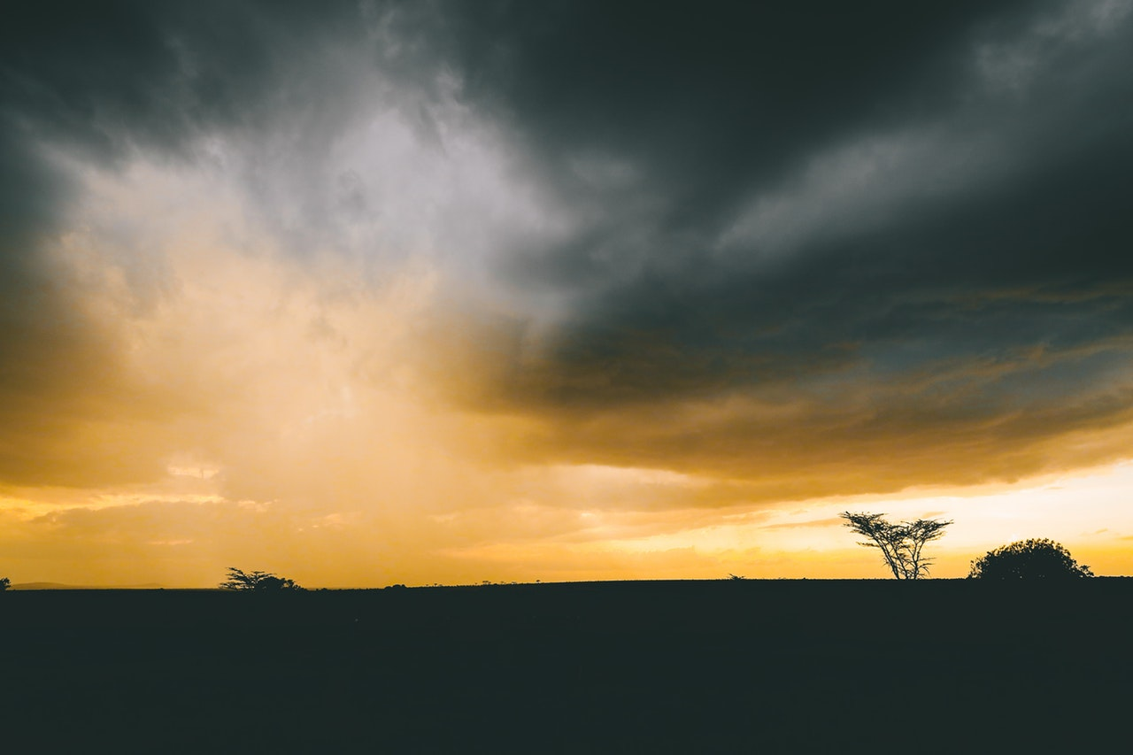 adventure-africa-dark-861311